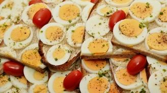 Едно яйце на ден намалява риска от инсулт