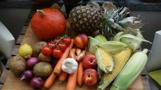 РЗИ-Добрич ще учи малцинствените групи на здравословно хранене