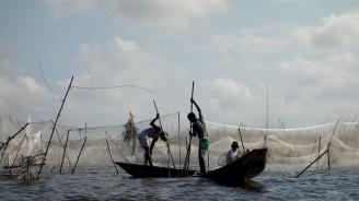 Трагедия по река Нигер в Мали. Лодки се преобърнаха, десетки загинаха