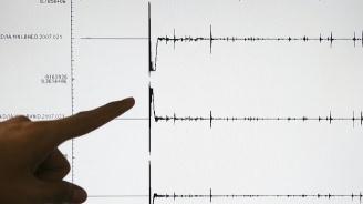 Две земетресения удариха Тихия океан