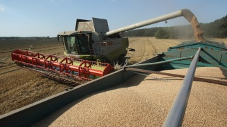 Декларации за произведени количества зърно ще се подават един път в годината