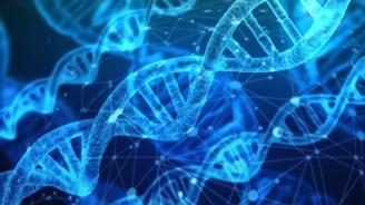 Вече могат да ви разкрият по чужда ДНК