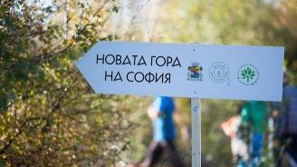 Започва есенният залесителен сезон в Новата гора на София край Суходол