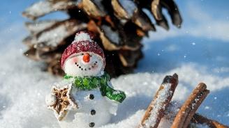 Хотелите и къщите за гости по курортите за Коледните и Новогодишни празници вече са почти заети