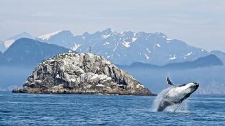 Учени откриха признаци за климатична катастрофа край брега на Аляска