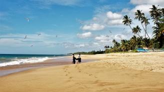 Шри Ланка е начело на класацията за най-добри дестинации за пътуване през 2019 година