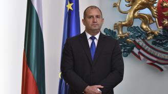 Румен Радев обсъди перспективите за подобряване на бизнес климата в България с холандски инвеститори
