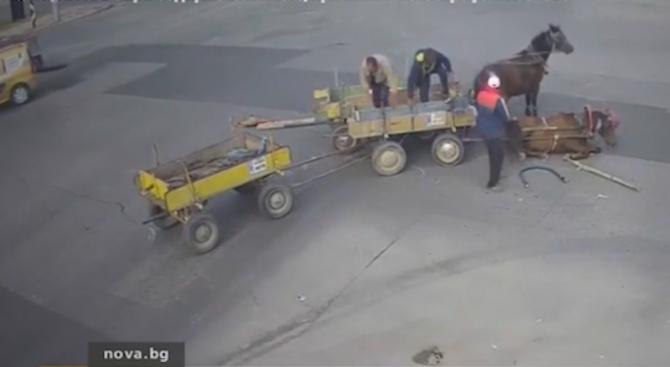 Каруцарите, които удариха кола на кръстовище в Хасково, са издирени