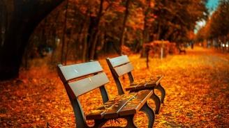 Проф. Рачев: Времето в Западна България влиза в състезание за най-сухата есен за последните 50 години