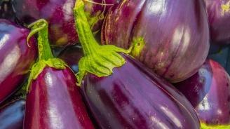 Пурпурните храни, които задължително да включите в менюто си през есента