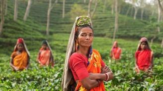 Върховният съд на Индия ще преразгледа решение за забрана на достъпа на жени до известен храм