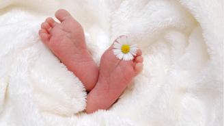 Момиченце се роди на 11 ноември в 11 ч. и 11 мин. в Минесота