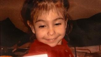 Бащата на малката Ани шокира: Не я убих, само нарязах трупа ѝ
