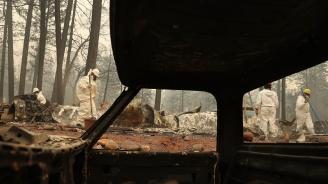 Жертвите на огнения ад в Калифорния станаха 56