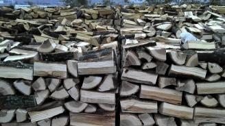 Полицията хвана незаконни дърва за огрев
