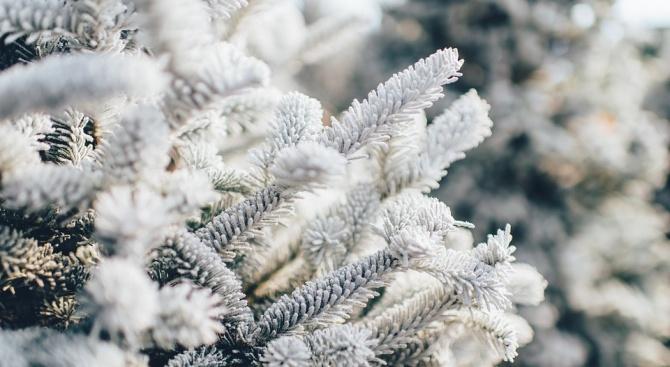 Първият сняг заваля в Силистренско. По данни от Областното пътно