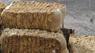Започва изкупната кампания на тютюна от тазгодишната реколта