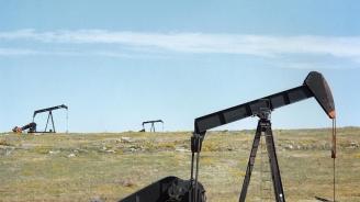 Петролът отново поевтиня