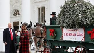 Белият дом блесна в патриотична коледна украса (снимки+видео)