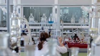 Учени създадоха мини плацента в лабораторна среда