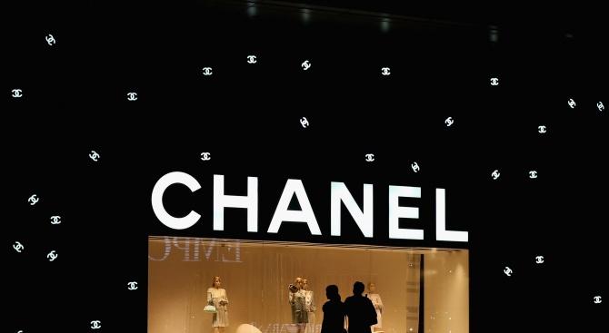 """""""Шанел"""" се отказва от крокодилската и змийска кожа"""