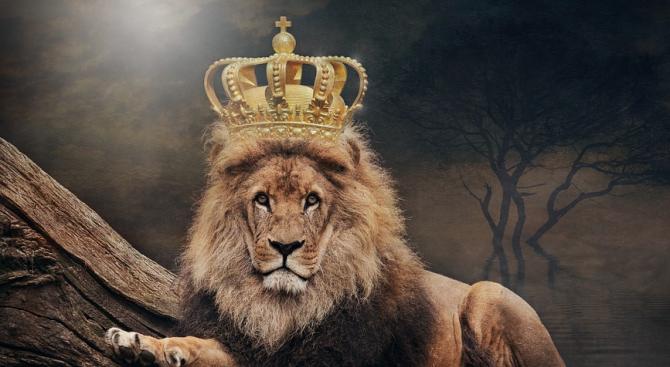 Кармата на Лъв