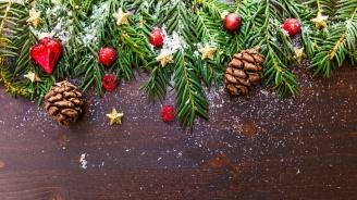 Какво време ни чака по Коледа и Нова година? (видео)