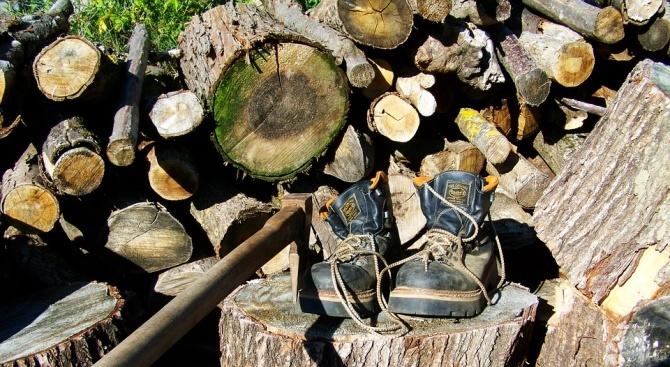 Спипаха мъж, опитал да търгува с незаконно добити дърва за огрев