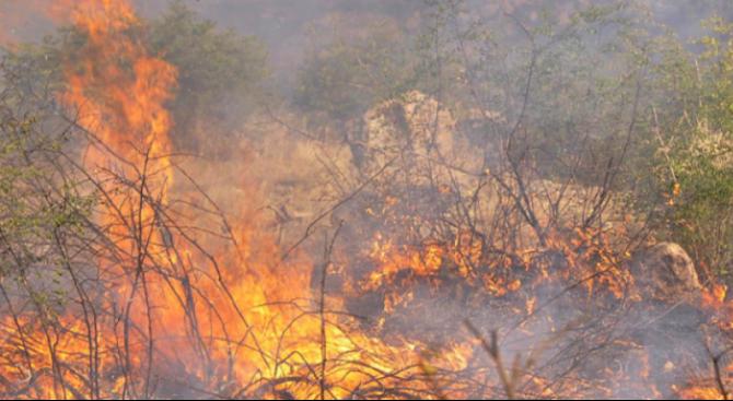 Заради пожара преди месец: Операторът на депото в Русе е глобен с 20 000 лева