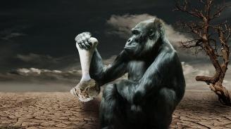 След 10 години климатът ще е като преди 3 милиона години