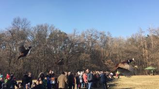 Ученици пуснаха 120 фазана в Борисовата градина (снимки)