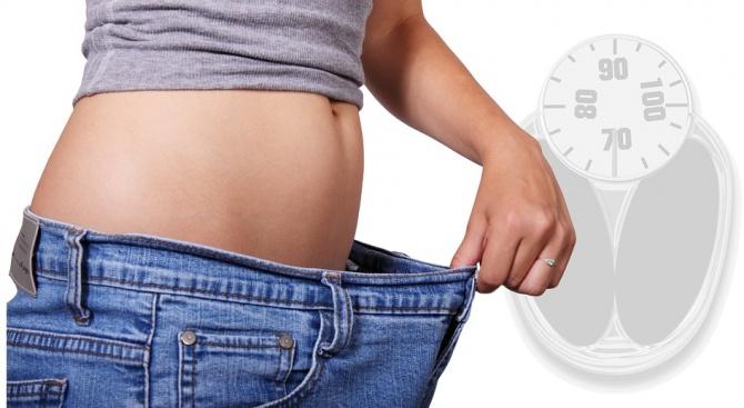 Целулозата помага за премахване на тлъстините в корема