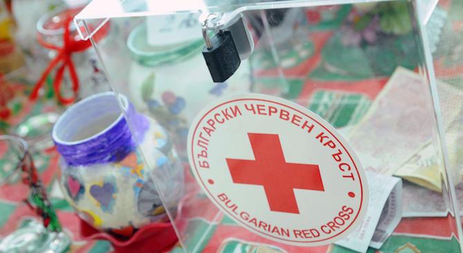9 деца от София, пострадали при пътни инциденти, получиха финансова