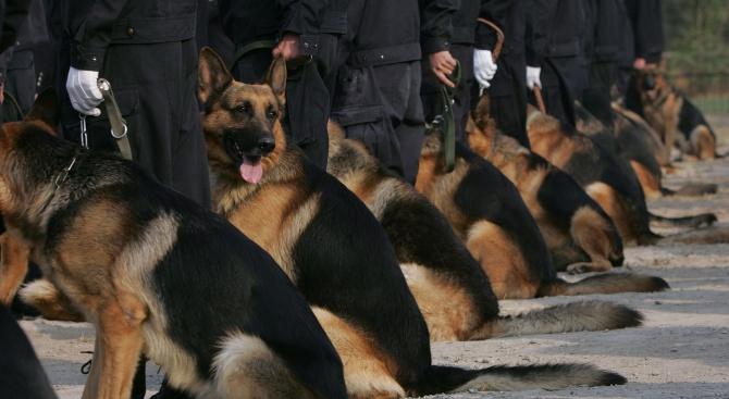 Германската полиция издирва заподозрян за нападения с нож срещу три