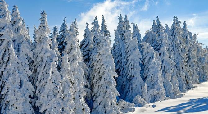 Сняг заваля и в редица европейски страни. Трима души загинаха