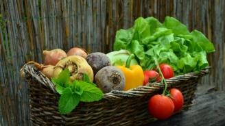 БАБХ извърши 198 проверки на пакетирани пресни и замразени плодове и зеленчуци в цялата страна