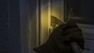 Как да опазим дома си от крадци по празниците