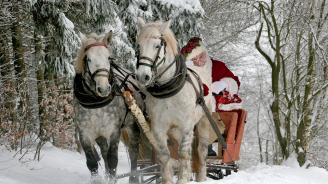 Дядо Коледа призова да помогнем на природата
