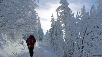 Тренд: 79% от българите няма да ходят на почивка в планината през тази зима