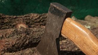 Масирани проверки за незаконен дърводобив и по празниците