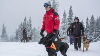 Планински спасители предупреждават скиорите за опасности в планините