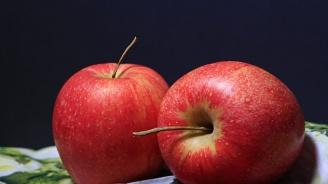 Ябълките помагат срещу болестта на Паркинсон