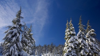 Студ и много ниски температури ни очакват днес