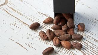 Дневна доза какао сваля кръвното налягане