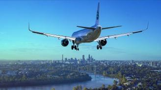 Птица предизвика паника в бизнес класата на самолет