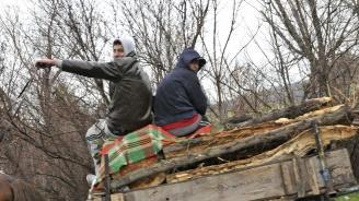 Задържаха две конски каруци, превозващи дърва без контролна горска марка