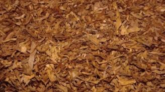 Иззеха близо 5 тона и половина нарязан тютюн без бандерол в Плевен