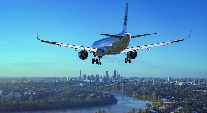 Снимка: Птица предизвика паника в бизнес класата на самолет