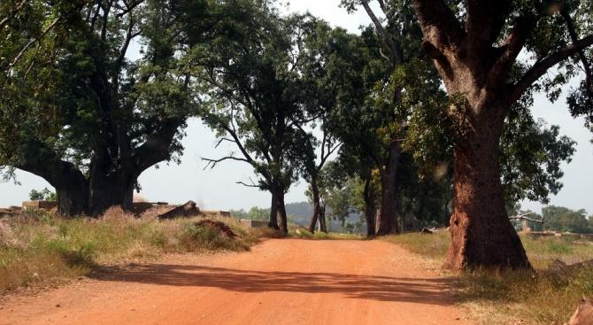 Канадски гражданин беше отвлечен снощи в северната част на Буркина