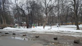 Бранят с камъни столична градинка от автомобили (снимки)